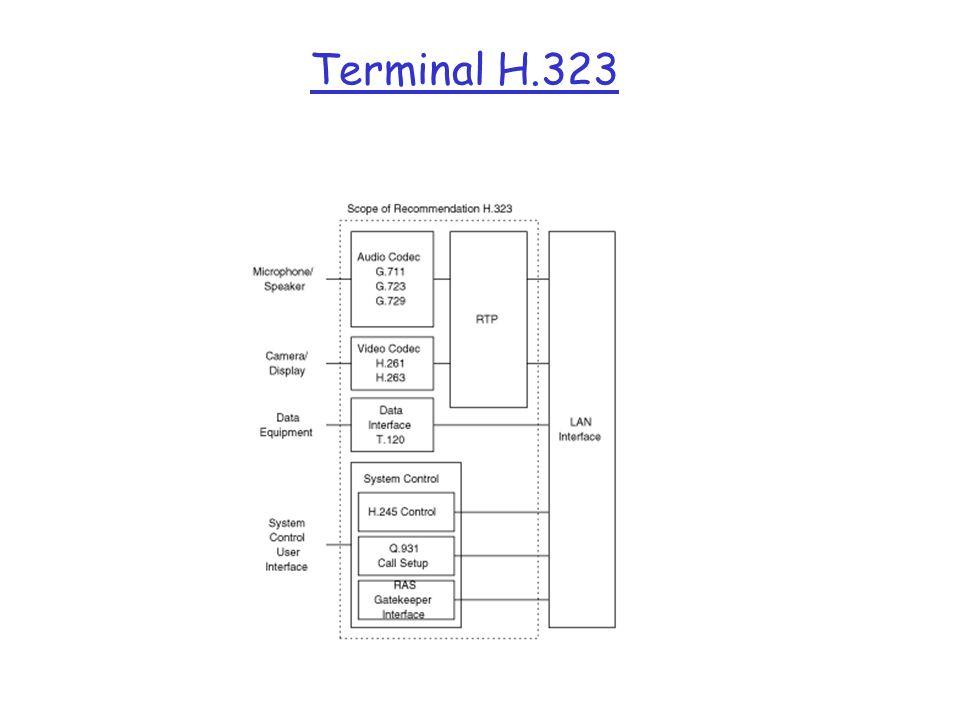 Terminal H.323