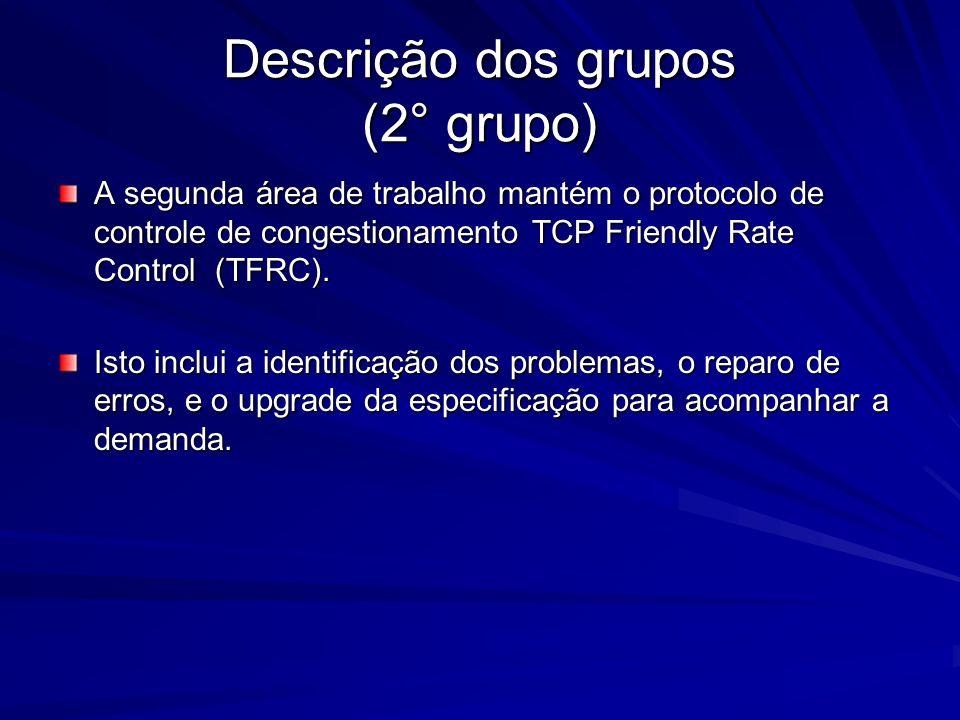 Descrição dos grupos (2° grupo)