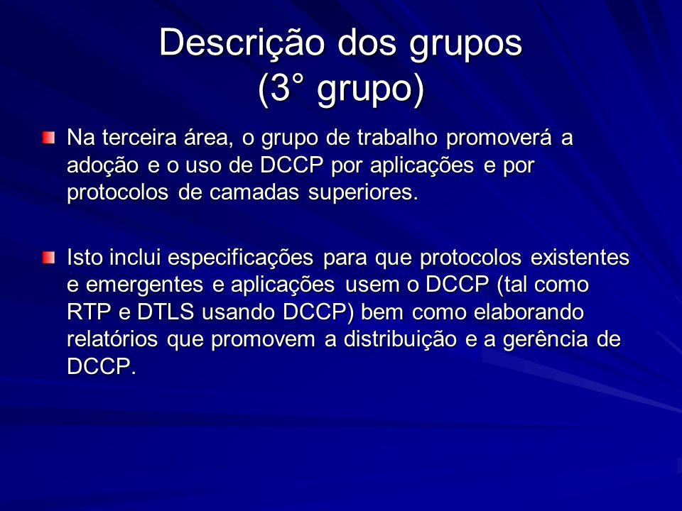 Descrição dos grupos (3° grupo)