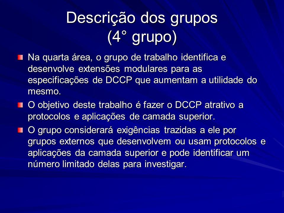 Descrição dos grupos (4° grupo)