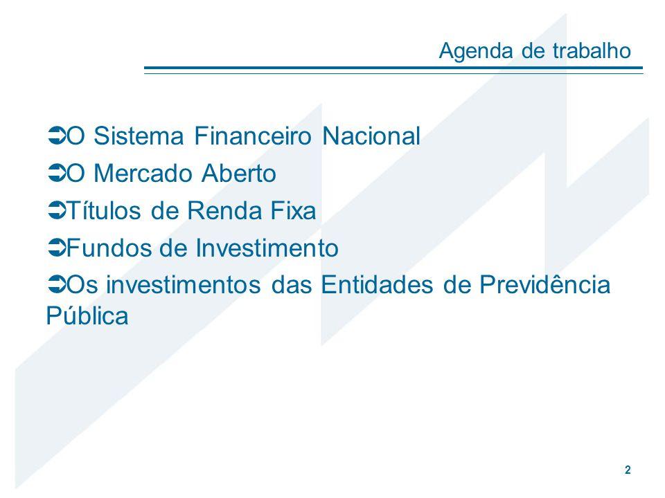 O Sistema Financeiro Nacional O Mercado Aberto Títulos de Renda Fixa