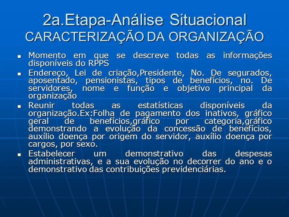 2a.Etapa-Análise Situacional CARACTERIZAÇÃO DA ORGANIZAÇÃO