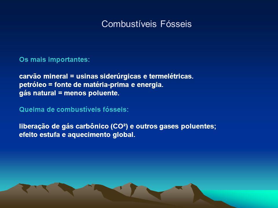 Combustíveis Fósseis Os mais importantes:
