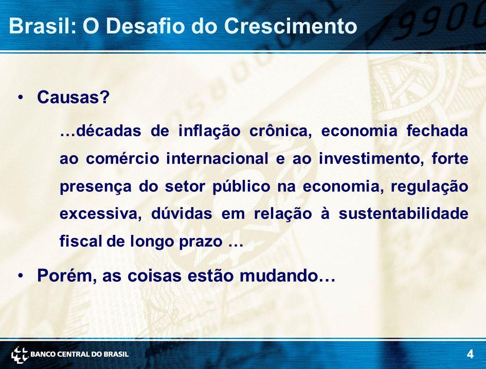 Brasil: O Desafio do Crescimento
