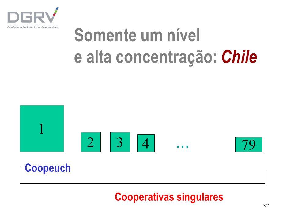 Somente um nível e alta concentração: Chile