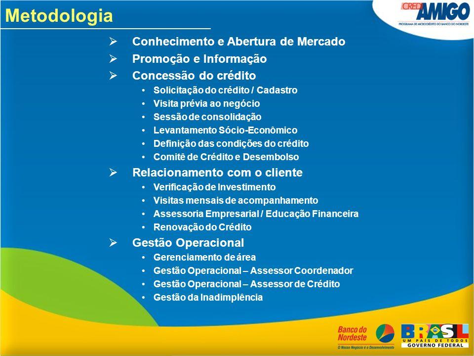 Metodologia Conhecimento e Abertura de Mercado Promoção e Informação