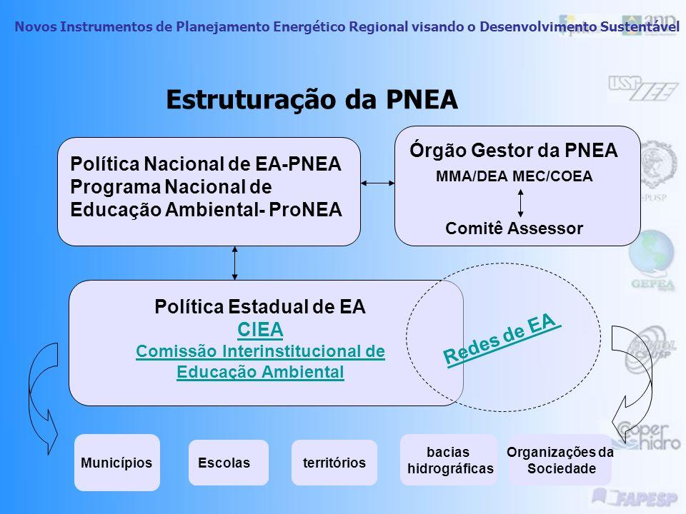 Estruturação da PNEA Órgão Gestor da PNEA
