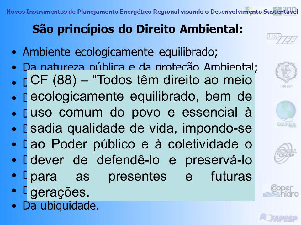 São princípios do Direito Ambiental: