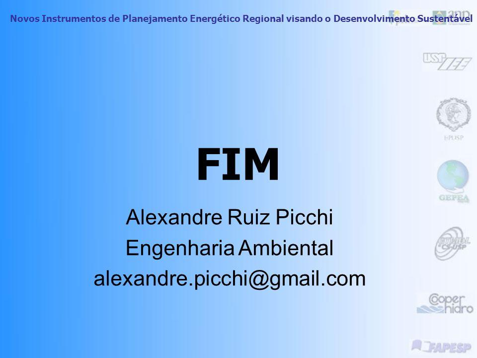 FIM Alexandre Ruiz Picchi Engenharia Ambiental