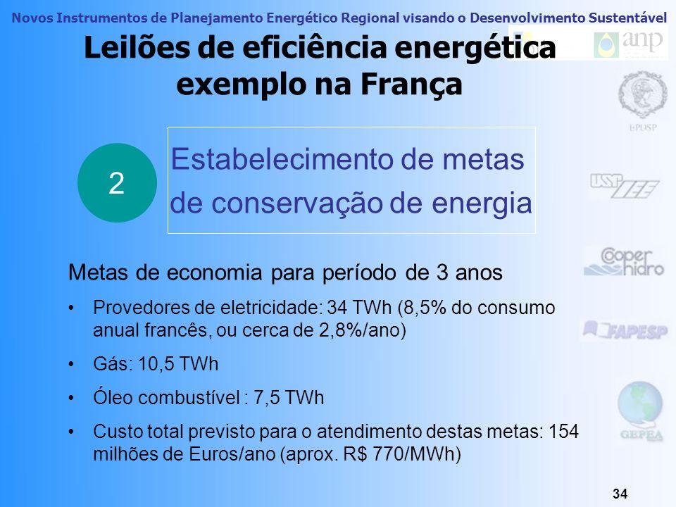 Leilões de eficiência energética exemplo na França