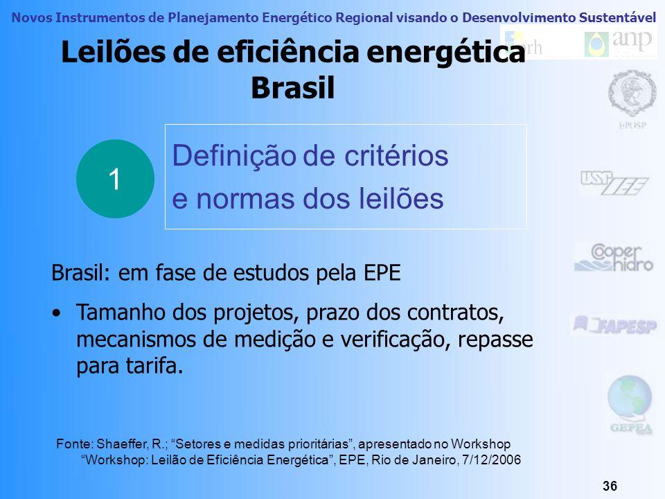 Leilões de eficiência energética Brasil