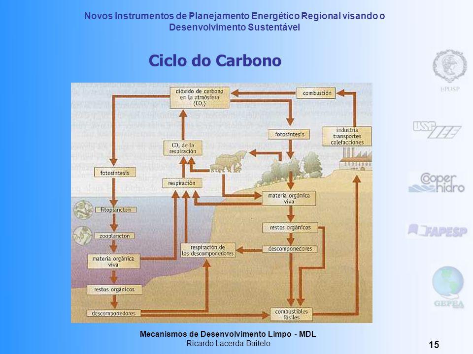 Ciclo do Carbono Mecanismos de Desenvolvimento Limpo - MDL