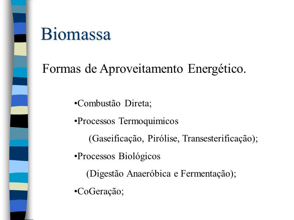 Biomassa Formas de Aproveitamento Energético. Combustão Direta;