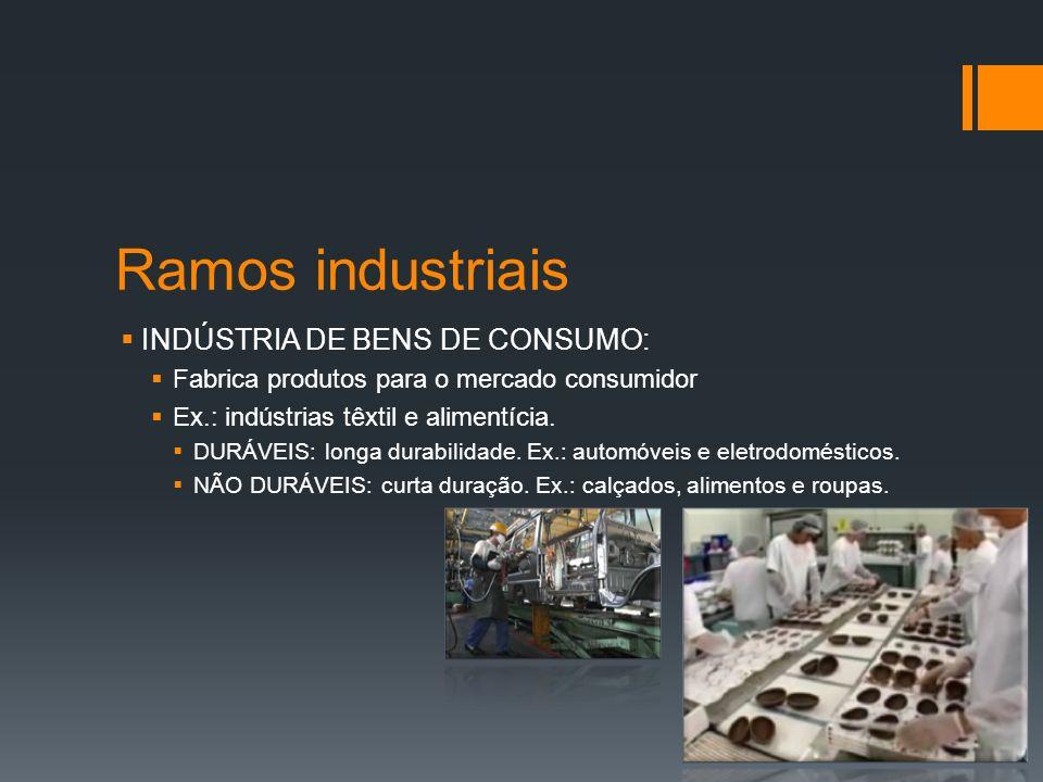 Ramos industriais INDÚSTRIA DE BENS DE CONSUMO: