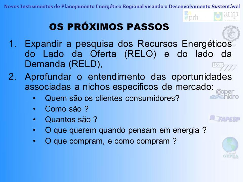 OS PRÓXIMOS PASSOS Expandir a pesquisa dos Recursos Energéticos do Lado da Oferta (RELO) e do lado da Demanda (RELD),