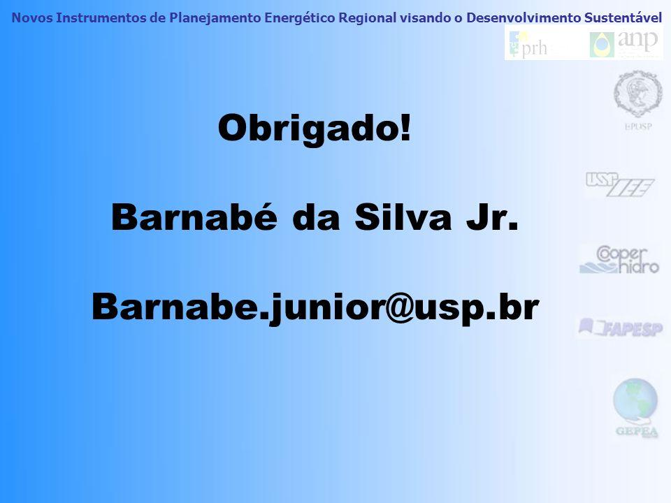 Obrigado! Barnabé da Silva Jr. Barnabe.junior@usp.br