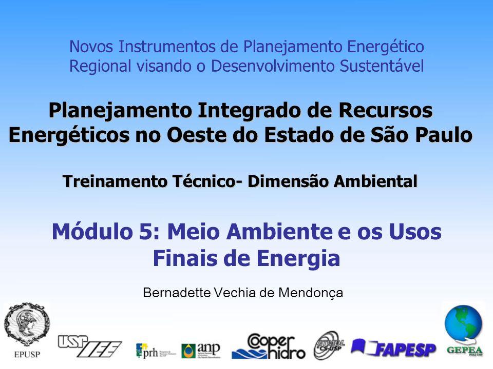Módulo 5: Meio Ambiente e os Usos Finais de Energia
