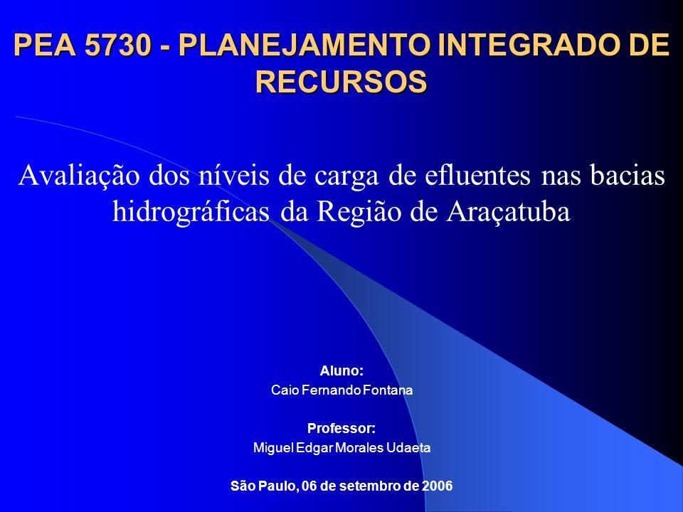 PEA 5730 - PLANEJAMENTO INTEGRADO DE RECURSOS