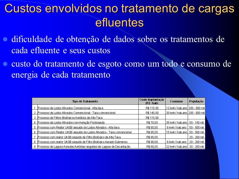 Custos envolvidos no tratamento de cargas efluentes