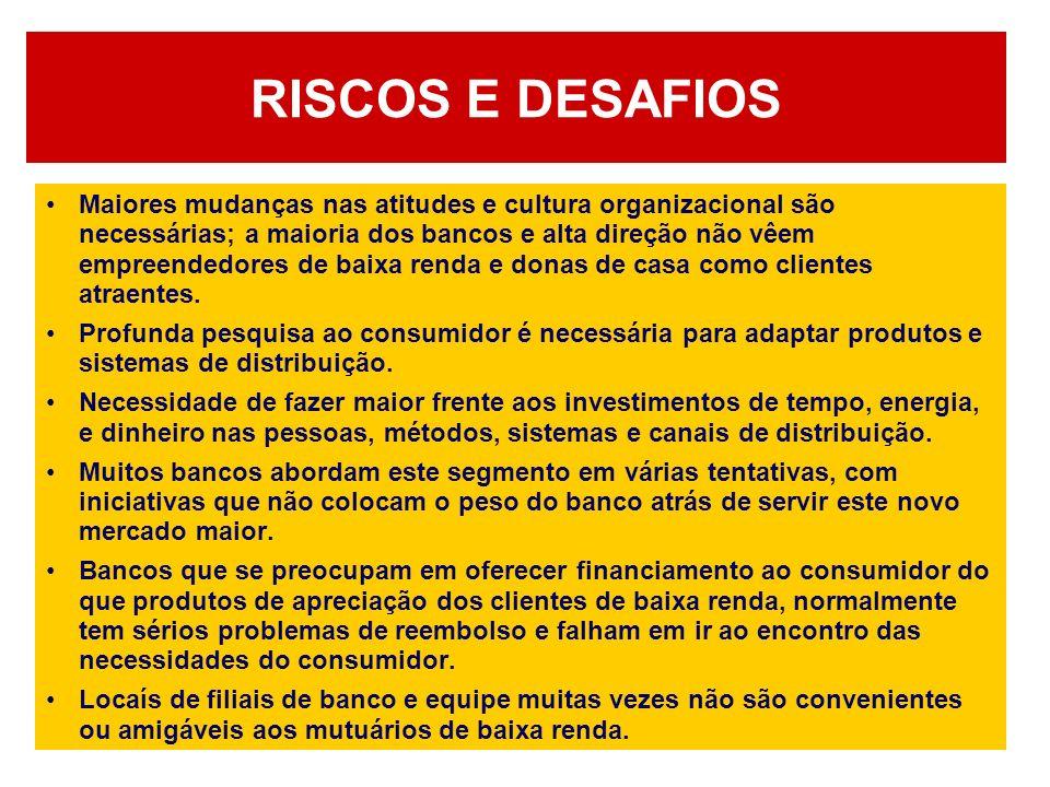 RISCOS E DESAFIOS