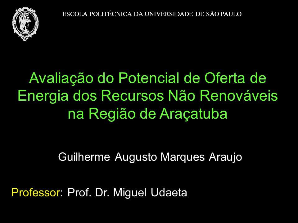 Guilherme Augusto Marques Araujo