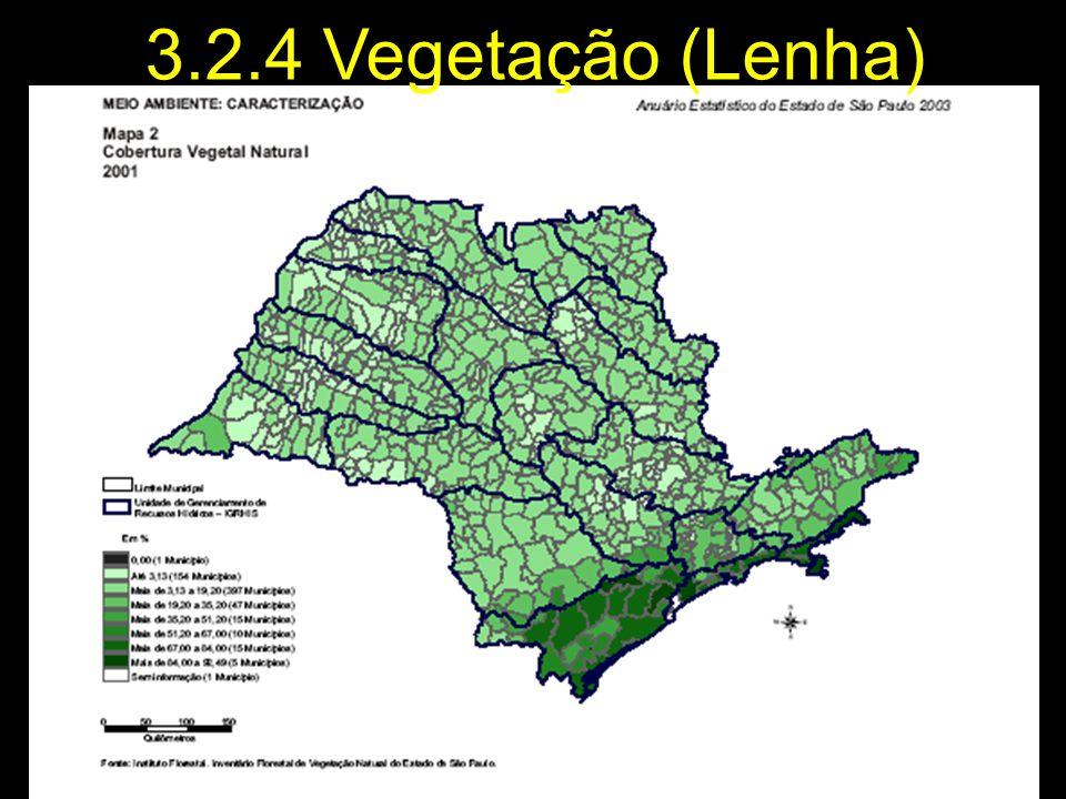 Qualificação 3.2.4 Vegetação (Lenha) 25/03/2017