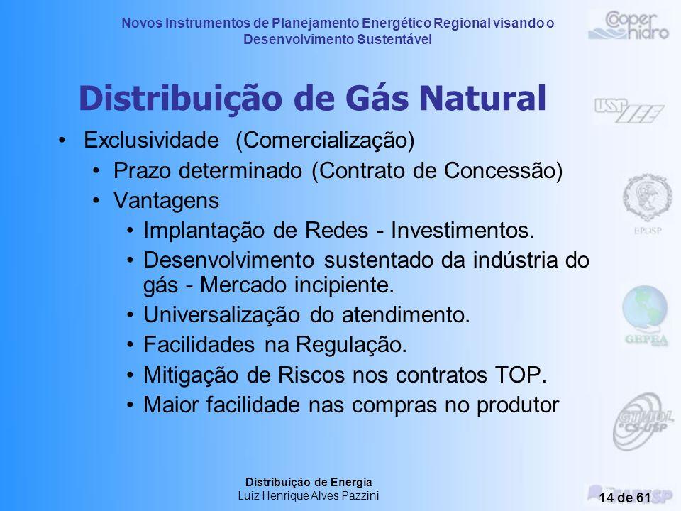 Distribuição de Gás Natural