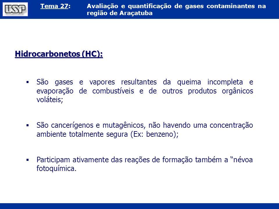 Hidrocarbonetos (HC):