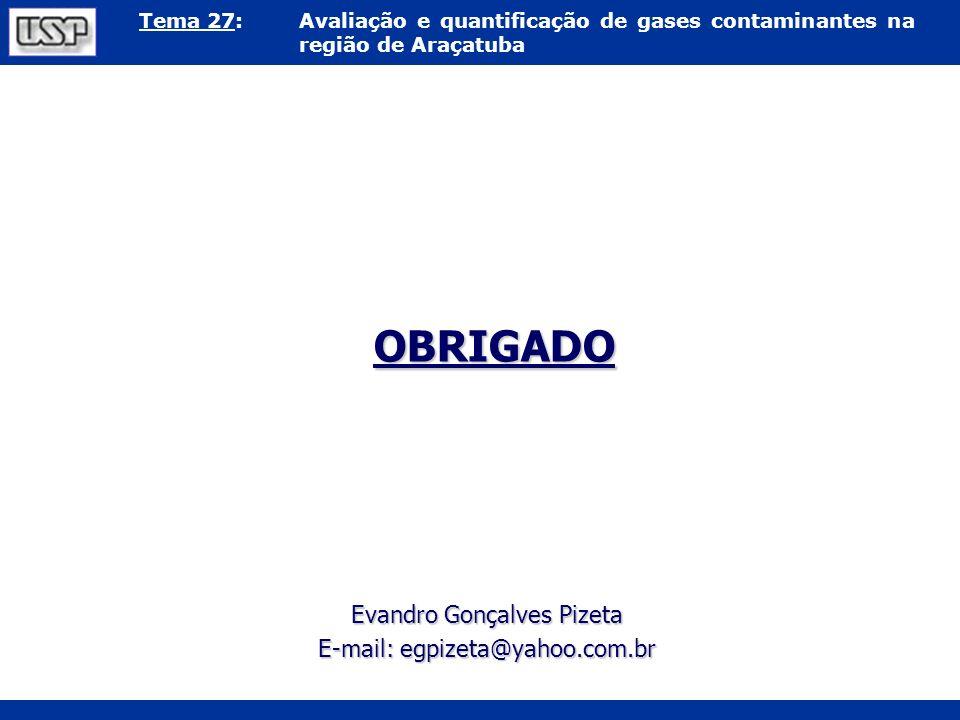 OBRIGADO Evandro Gonçalves Pizeta E-mail: egpizeta@yahoo.com.br