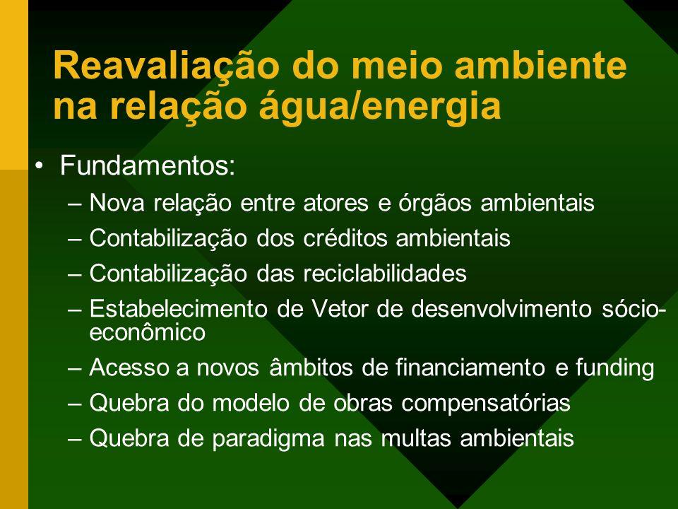 Reavaliação do meio ambiente na relação água/energia