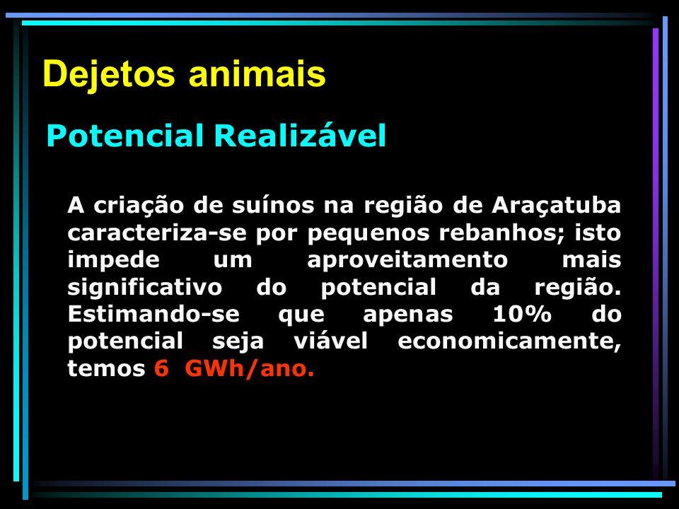 Dejetos animais Potencial Realizável.