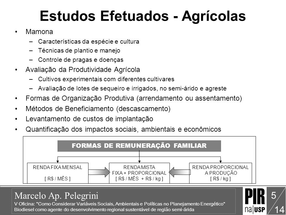 Estudos Efetuados - Agrícolas