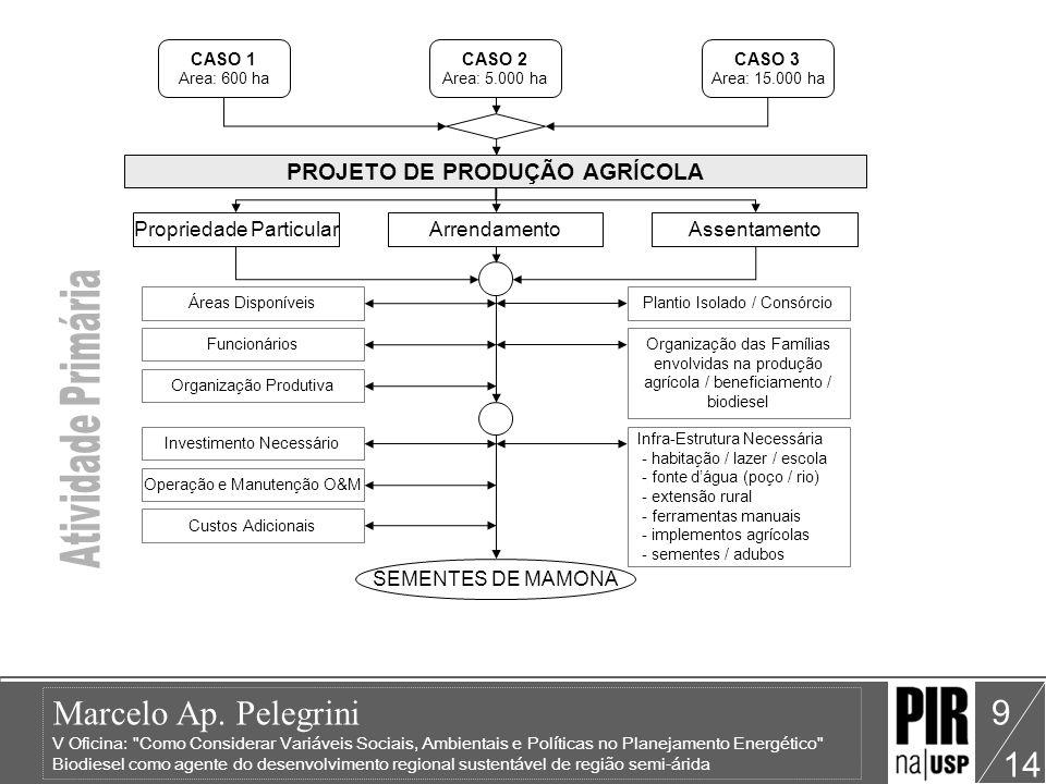 PROJETO DE PRODUÇÃO AGRÍCOLA