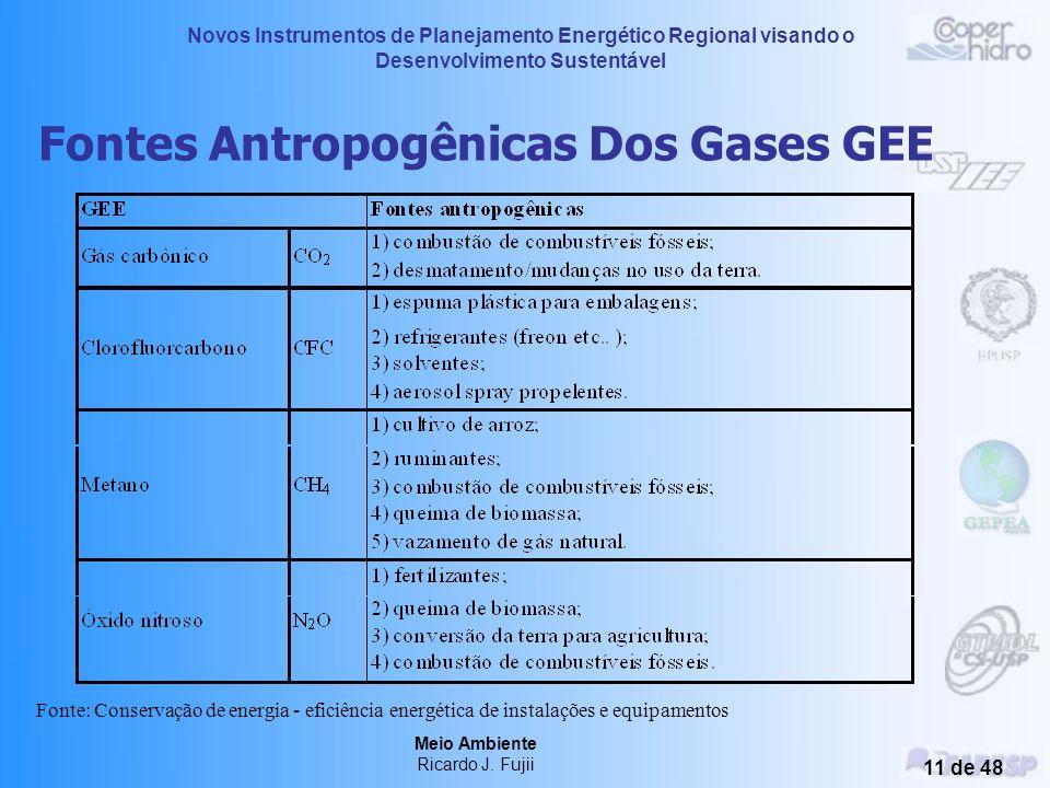 Fontes Antropogênicas Dos Gases GEE