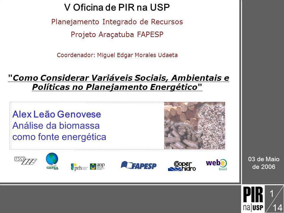V Oficina de PIR na USP Alex Leão Genovese Análise da biomassa