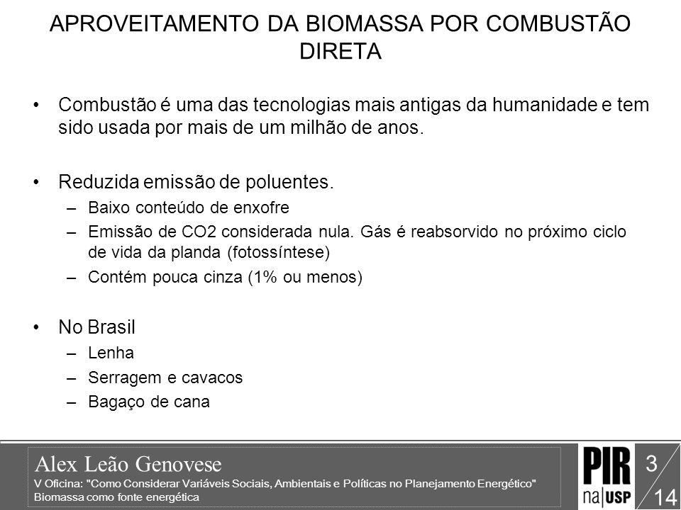 APROVEITAMENTO DA BIOMASSA POR COMBUSTÃO DIRETA