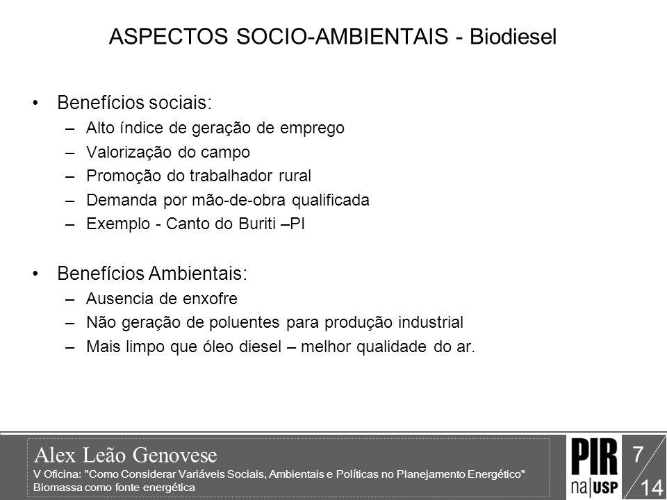 ASPECTOS SOCIO-AMBIENTAIS - Biodiesel
