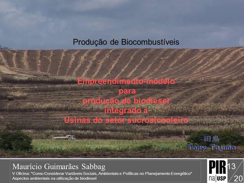Produção de Biocombustíveis Empreendimento-modelo para produção de biodiesel integrado a Usinas do setor sucroalcooleiro