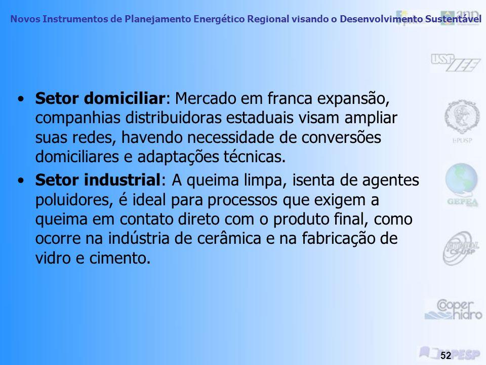 Setor domiciliar: Mercado em franca expansão, companhias distribuidoras estaduais visam ampliar suas redes, havendo necessidade de conversões domiciliares e adaptações técnicas.