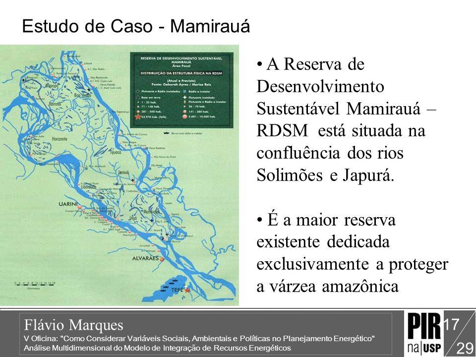 Estudo de Caso - Mamirauá