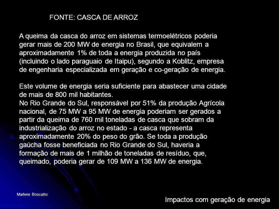 FONTE: CASCA DE ARROZ