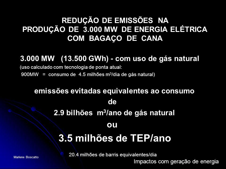 REDUÇÃO DE EMISSÕES NA PRODUÇÃO DE 3.000 MW DE ENERGIA ELÉTRICA