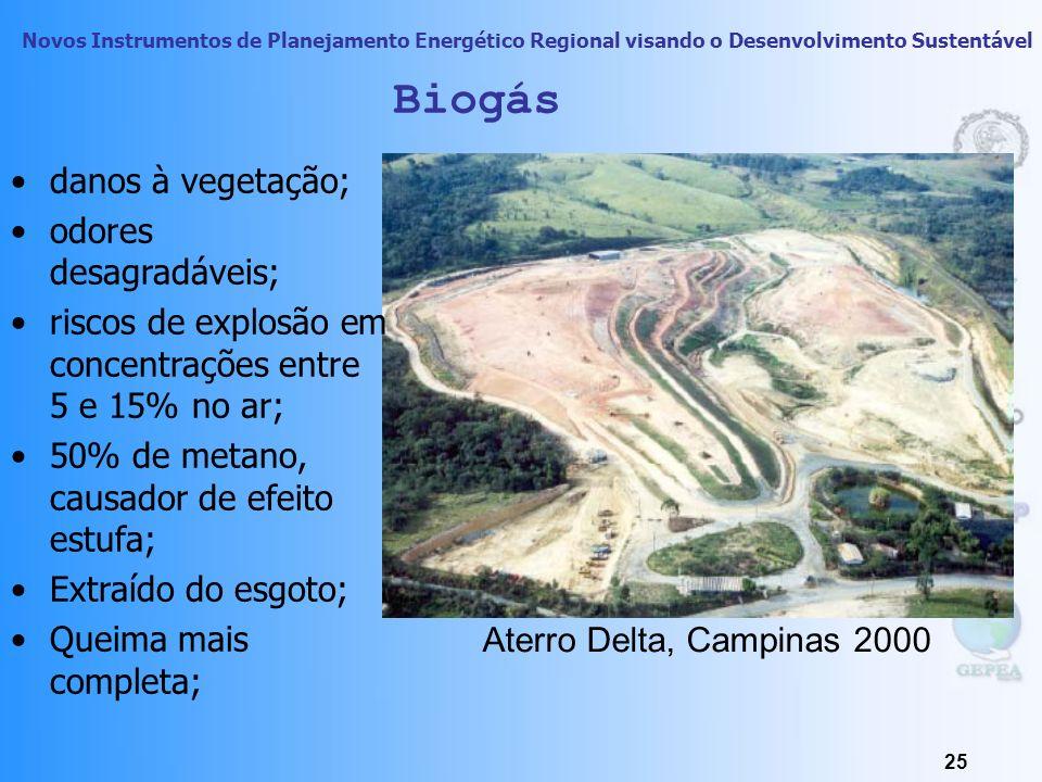 Biogás danos à vegetação; odores desagradáveis;