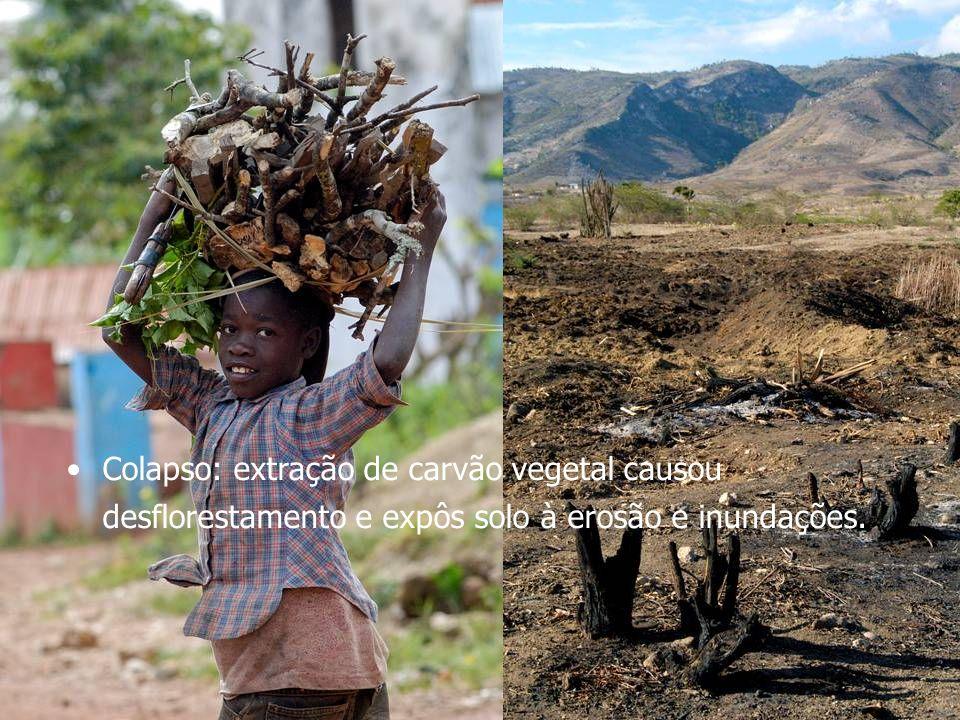 Colapso: extração de carvão vegetal causou desflorestamento e expôs solo à erosão e inundações.