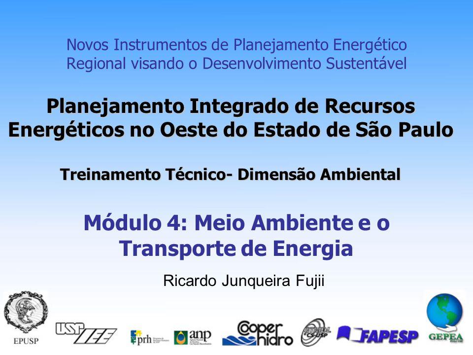 Módulo 4: Meio Ambiente e o Transporte de Energia