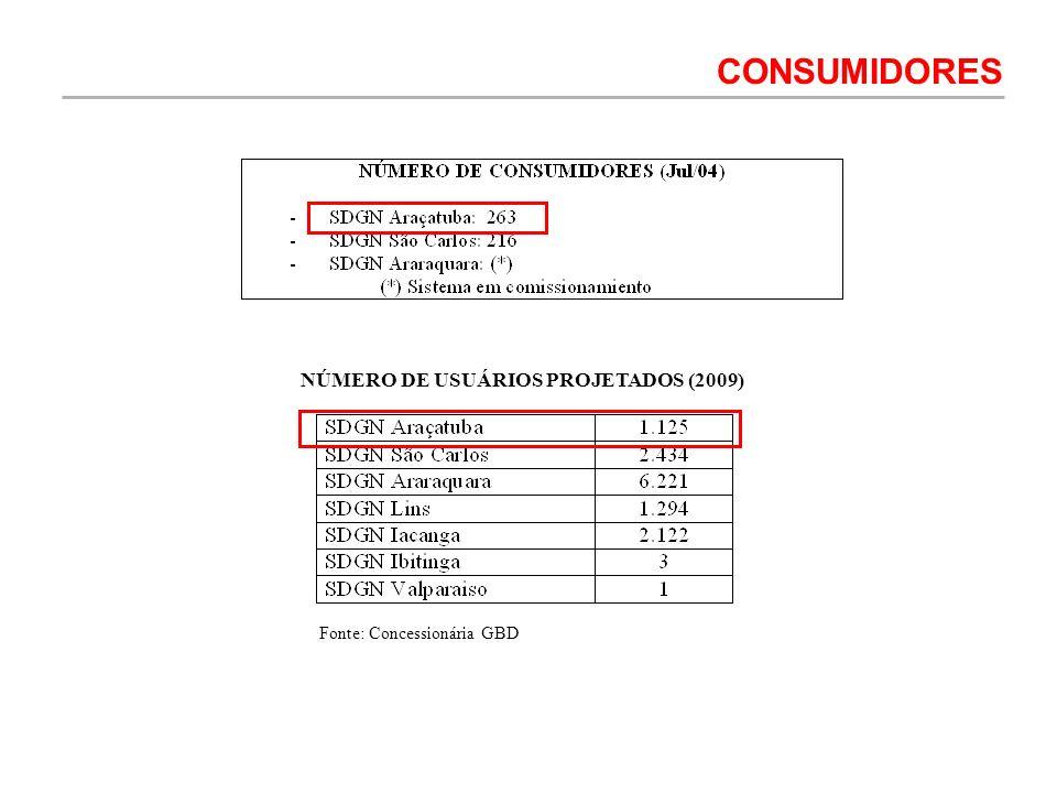 NÚMERO DE USUÁRIOS PROJETADOS (2009)