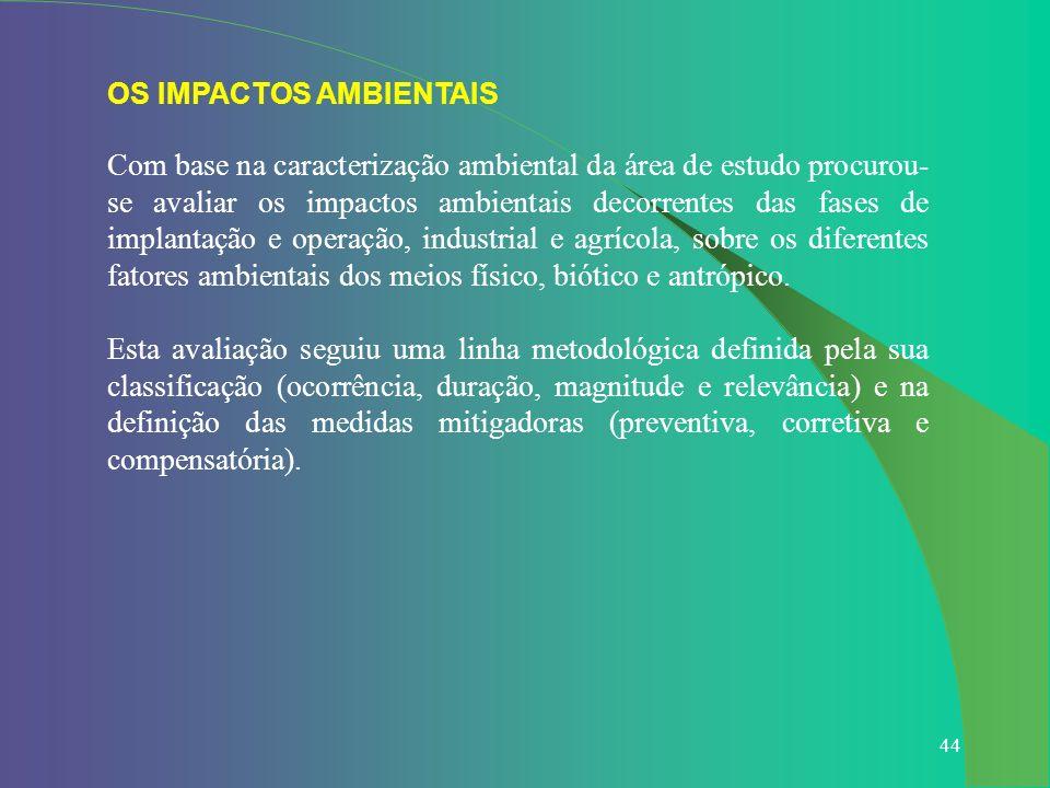 OS IMPACTOS AMBIENTAIS