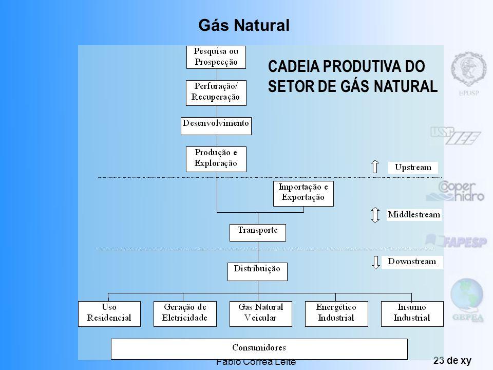CADEIA PRODUTIVA DO SETOR DE GÁS NATURAL