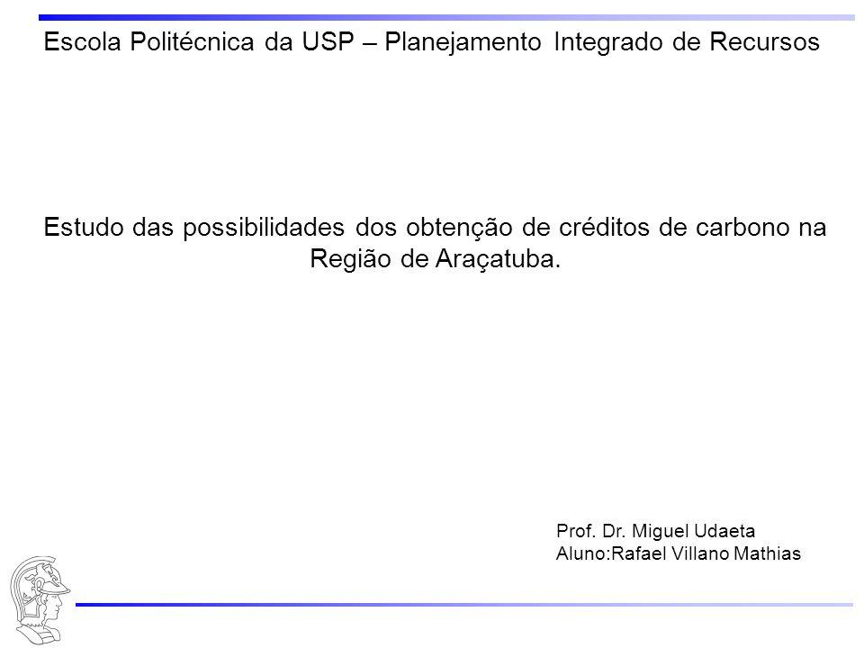 Estudo das possibilidades dos obtenção de créditos de carbono na Região de Araçatuba.