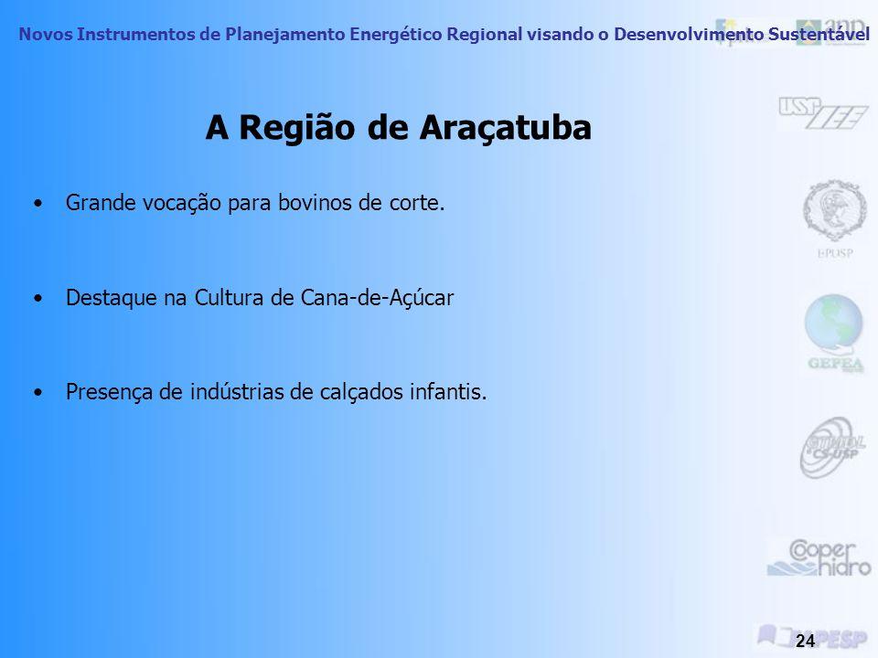A Região de Araçatuba Grande vocação para bovinos de corte.